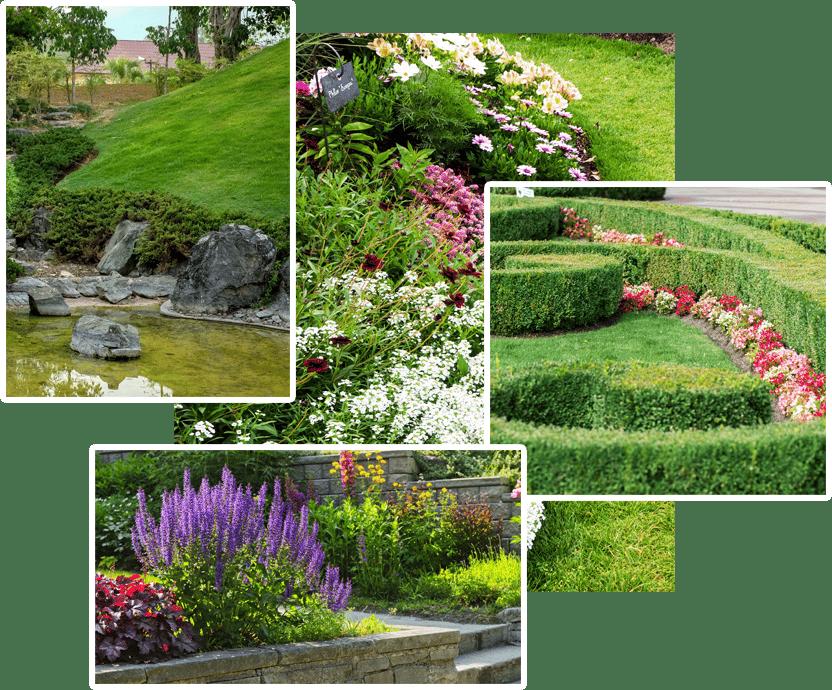Various landscape design images